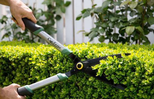 Gardener-Gallery-image-4
