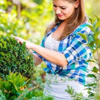 gardener-masonry-3
